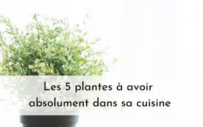 LES 5 PLANTES A AVOIR ABSOLUMENT DANS SA CUISINE